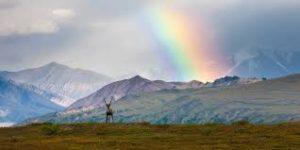 Alaskan rainbow dreams